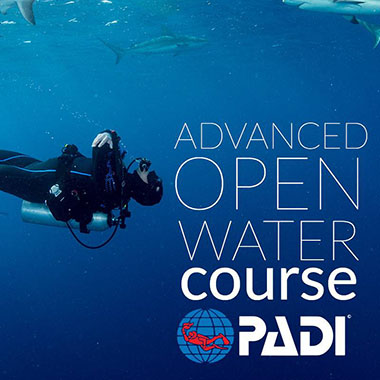 force e scuba centers class advanced open water