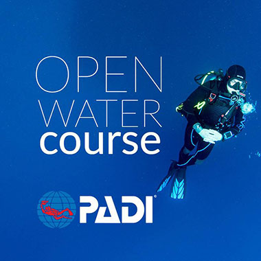 force e scuba centers class open water